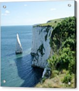 The Pinnacle Stack Of White Chalk From The Cliffs Of The Isle Of Purbeck Dorset England Uk Acrylic Print by Andy Smy