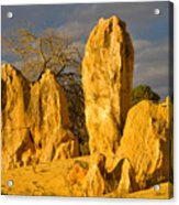 The Pinnacles Nambung National Park Australia Acrylic Print