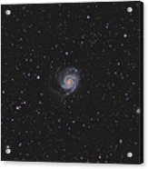 The Pinwheel Galaxy Acrylic Print