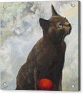 The Pious Cat Acrylic Print