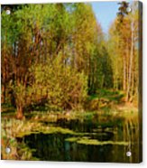The Pond In The Spring Acrylic Print