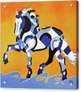 The Power Of Equus Acrylic Print