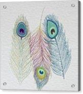 The Power Of Three Be Wild Be Free  Acrylic Print