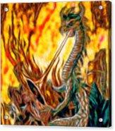 The Prince Battles The Dragon Acrylic Print