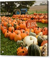 The Pumpkin Farm One Acrylic Print
