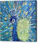 The Rain Peacock's Pride Acrylic Print