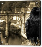 The Raven Of Knareborough Castle Acrylic Print