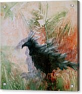 The Raven Sitting Lonely Acrylic Print
