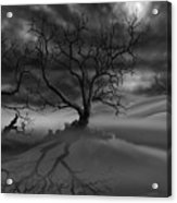 The Raven's Night Acrylic Print