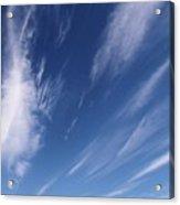 The Reaching Sky 3 Acrylic Print