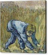 The Reaper After Millet Saint Remy De Provence, September 1889 Vincent Van Gogh 1853  1890 Acrylic Print