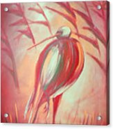 The Red Bird Acrylic Print