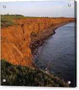The Red Cliffs Of Prince Edward Island Acrylic Print