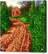 The Red House In Finland Acrylic Print