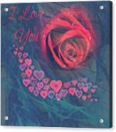 The Red Rose Of Love Acrylic Print