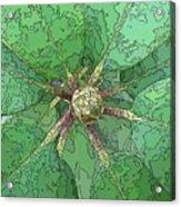 The Rhody Bud Acrylic Print