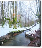 The River In The Otzarreta Forest With Snow Acrylic Print