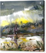The River Nistru IIi Acrylic Print