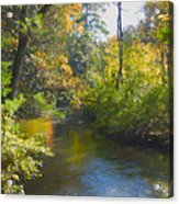 The River  Acrylic Print