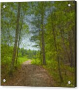 The Road Goes Ever On And On Acrylic Print