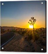 The Road To Joshua Tree At Sunset Acrylic Print