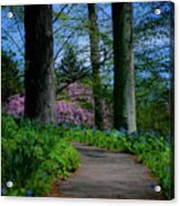 The Road To Peace And Quiet Acrylic Print