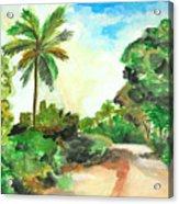 The Road To Tiwi Acrylic Print