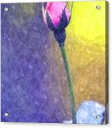 The Rose Bud Acrylic Print