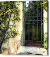The Rose Vined Door Acrylic Print by Lynn Andrews