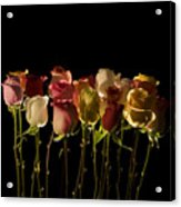 The Rose's Forest Acrylic Print
