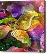 The Roses In The Sheep Dream Acrylic Print