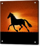 The Running Horse Background Acrylic Print