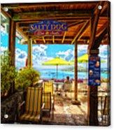 The Salty Dog Cafe St. Thomas Acrylic Print
