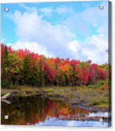 The Scarlet Reds Of Autumn Acrylic Print