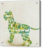 The Schnauzer Dog Watercolor Painting / Typographic Art Acrylic Print
