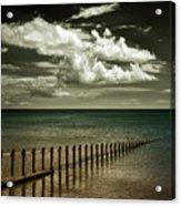 The Sea Acrylic Print
