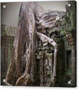 The Secrets Of Angkor Acrylic Print by Eena Bo