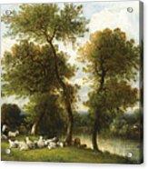 The Shepherd's Break With  His Sheep Acrylic Print