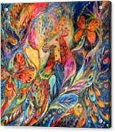 The Shining Of The Night Acrylic Print