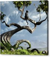The Sitting Tree Acrylic Print