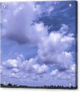 The Sky Is The Limit Acrylic Print