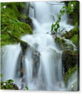 The Slithering Mist Acrylic Print