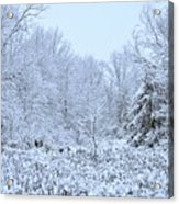 The Snow Falls To The Trees Acrylic Print