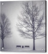 The Soft Breath Of Winter Acrylic Print