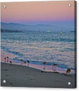 The Soft Side Of Sunset Acrylic Print