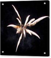 The Spider Acrylic Print