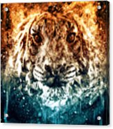 The Spirit Tiger Acrylic Print