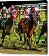 The Sport Of Kings Acrylic Print