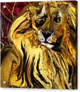 The Squinting Lion Acrylic Print