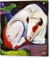 The Steer The Bull 1911 Acrylic Print